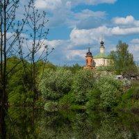 Весна в Колюбакино :: Alexander Petrukhin