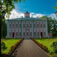 Дворец в усадьбе Большие Вяземы :: Alexander Petrukhin