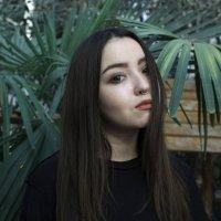 *** :: Мария Панькина
