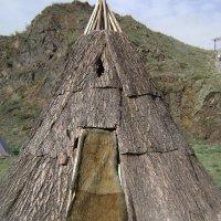 Жилище таежных тувинцев горной Тоджи :: Марина Домосилецкая