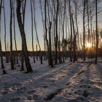Зимний вечер 2016 :: Юрий Клишин