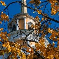 Пришла осень.. :: Сергей Elf N