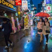 прогулка под красным зонтом в дождь :: Sofia Rakitskaia