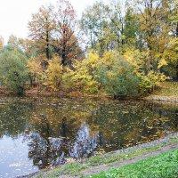 Осенний уголок... :: Николай Дони