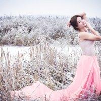Холод и нежность :: Елена Дырда