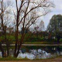 У пруда осеннего :: Юрий