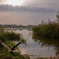 Восход солнца на озере :: Юрий Бичеров