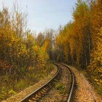 осень на железной дороге :: Сергей Кочнев