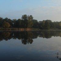 Утро на озере :: Eduard Mezker