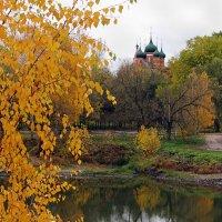 Осенняя зарисовка :: Николай Белавин