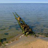 Чистая вода :: Сергей Карачин