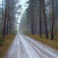 Дорога к морю, под Покровом . :: Мила Бовкун