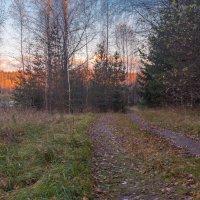 Закат в конце октября :: Борис Устюжанин