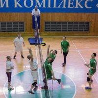 Соревнования по волейболу 2016 6 :: Людмила Мозер