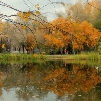 БУНИНСКАЯ Осень :: Арина Невская