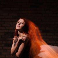 магия света :: Светлана Орешко