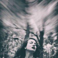 Sunlight :: ufoto16©photography ufoto16©photography