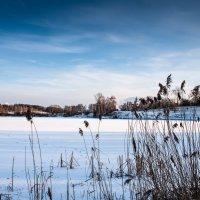Зимний пейзаж в голубых тонах :: Владимир Безбородов
