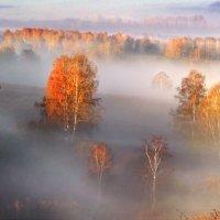 Туманные дали :: Владимир Миронов