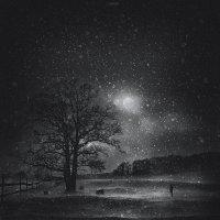 winter night :: lana cardi