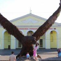 Орел :: Сергей Анчуткин