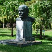 Порт Луи. Тропики, пальмы...Ленин. :: Ольга Васильева