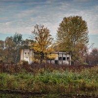 Осенний пейзаж :: Валерий Голоха