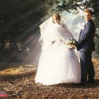 Свадьба Карины и Никиты :: Андрей Молчанов