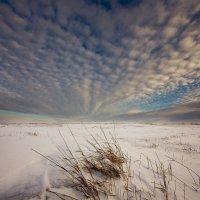 Облачный веер :: Сергей Жуков