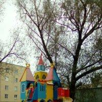 Сегодня выпал первый сенег в Питере! :: Светлана Калмыкова