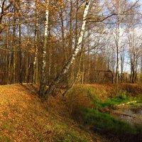 Поймал позднюю осень в Абрамцеве :: Андрей Лукьянов