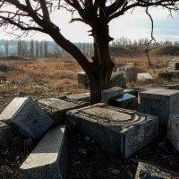 Старое Еврейское кладбище :: Алла Рыженко