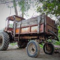 Экскурсии по Абхазии! Недорого! :: Елена Ом