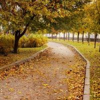 Осень в Петербурге :: Екатерина Жукова