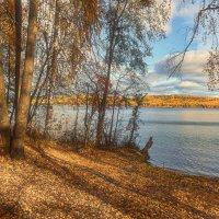 У озера :: vladimir Bormotov