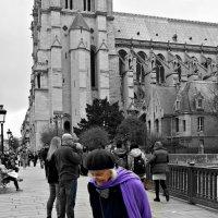 Париж..Прогулка возле Нотр Дама :: Galina