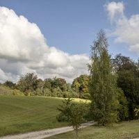 Скоро полетят листья! :: Marina Talberga