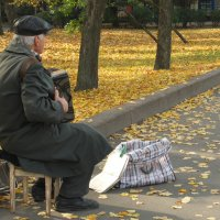 Осенняя песня :: Наталья Тимошенко