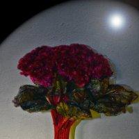 маленькое дерево :: Роза Бара