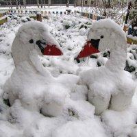 Ути-пути в первом снегу :: veera (veerra)