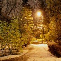 первый снег :: navalon M