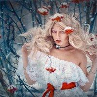 Зима пришла :: Roman Sergeev