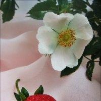 Когда и вкусно, и красиво... :: Нина Корешкова