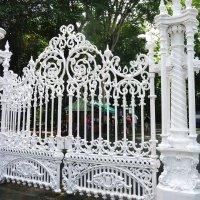Королевский ботанический сад. :: Ольга Васильева