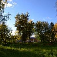 Осень. :: zoja