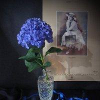 Этюд с голубой гортензией :: Татьяна Ким