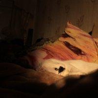 В ночи :: Дмитрий