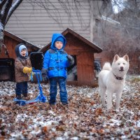 Друзья встречают первый снег :: Ксения ...