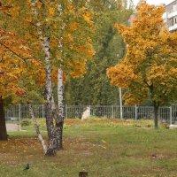 Осень в городе :: София