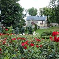 Кадриоргский парк :: Елена Павлова (Смолова)